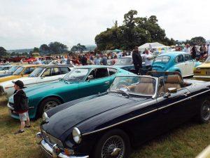 Cars 007-800x600