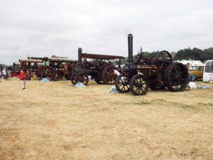 Steam 003-800x600